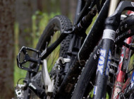 Mountain Bike Tours in Banff National Park