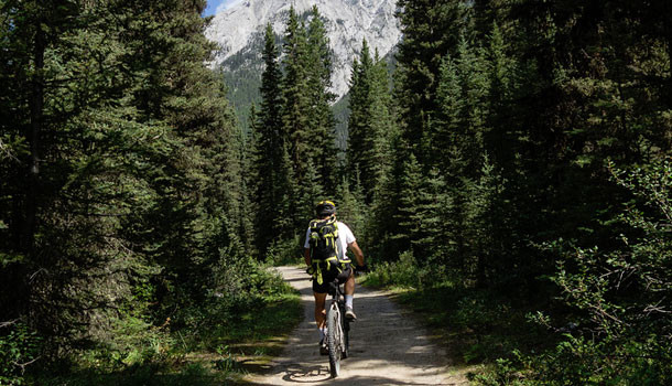 Banff Mountain Biking Tours | Hotels in Banff| Enjoy Banff ...